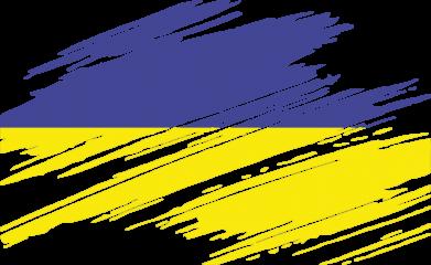 Принт Футболка Поло Рваний прапор - FatLine