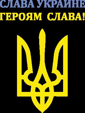 Принт Мужская майка Слава Украине! Героям слава! - FatLine