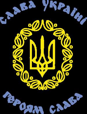 Принт Футболка с длинным рукавом Слава Україні, Героям Слава! - FatLine