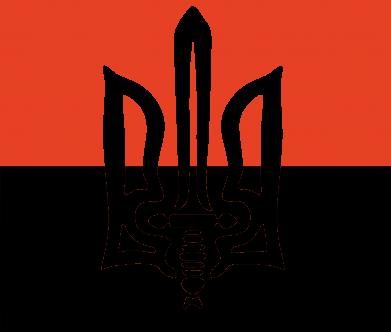 Принт Камуфляжная футболка Герб Правого Сектору - FatLine
