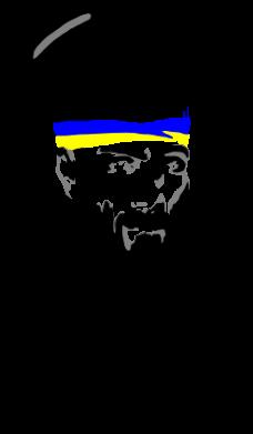 Принт Штаны Борода патріота - FatLine
