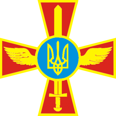 Принт Реглан Крест з мечем та гербом - FatLine