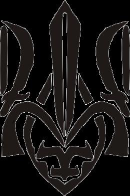 Принт Футболка с длинным рукавом Гарний герб України - FatLine