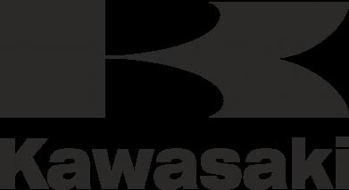 Принт Тельняшка с длинным рукавом Kawasaki - FatLine