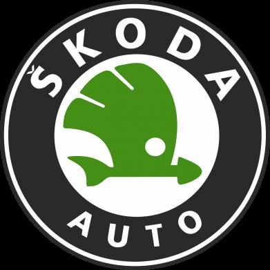 Принт Снепбек Skoda Auto - FatLine