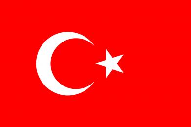 Принт Штаны Турция - FatLine