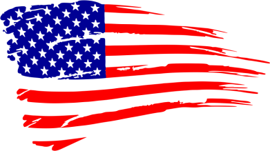 Принт Футболка Флаг США - FatLine