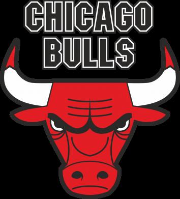 Принт Толстовка Chicago Bulls vol.2 - FatLine