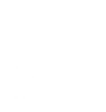 Принт Майка-тельняшка Mazda Small - FatLine
