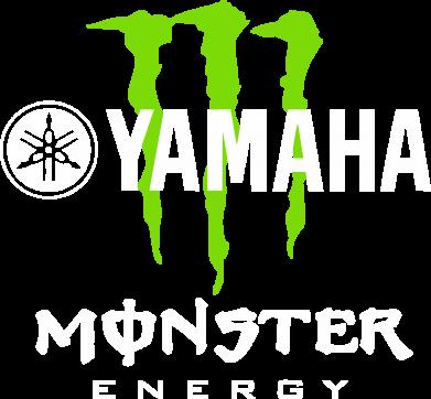 Принт Мужские шорты Yamaha Monster Energy - FatLine