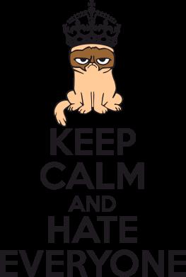 Принт Тельняшка с длинным рукавом KEEP CALM and HATE EVERYONE - FatLine