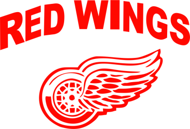 Принт Шапка Detroit Red Wings - FatLine