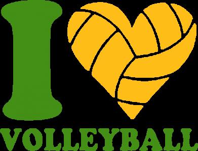 Принт Реглан (свитшот) I love volleyball - FatLine