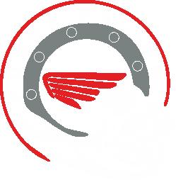 Принт Мужская майка Honda Racing - FatLine