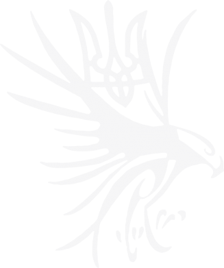Принт Мужская толстовка на молнии Сокіл та герб України - FatLine
