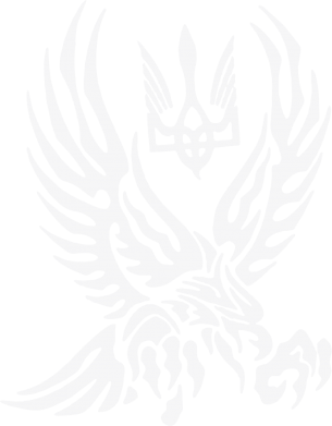 Принт Шапка Птах та герб - FatLine