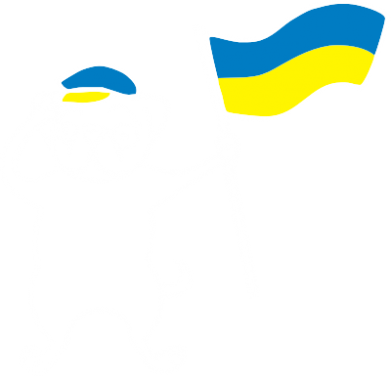 Принт Реглан (свитшот) Пес з прапором - FatLine