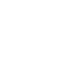 Принт Реглан Козак з щитом - FatLine