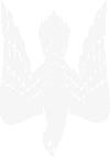 Принт Женская футболка поло Герб-сокіл - FatLine