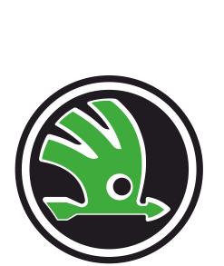 Принт Детская футболка Skoda - FatLine