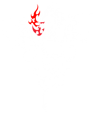 Принт Мужская толстовка на молнии Дракон - FatLine