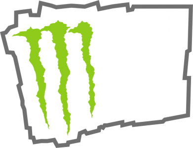 Принт Реглан World Rally Team - FatLine