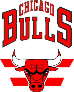 Принт Футболка Большой логотип Chicago Bulls - FatLine