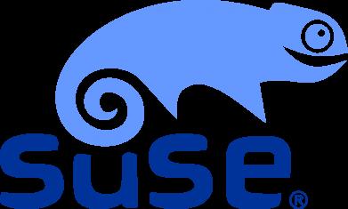 Принт Толстовка Linux Suse - FatLine