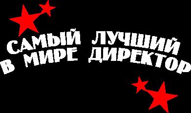 Принт Толстовка Самый лучший в мире директор - FatLine