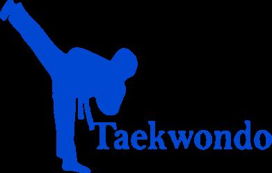 Принт Подушка Taekwondo - FatLine