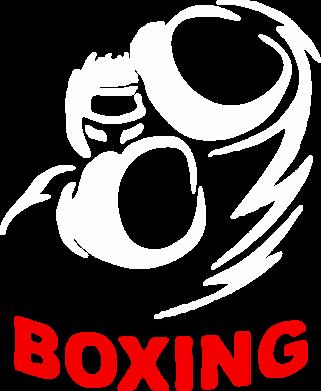 Принт Реглан (свитшот) Boxing - FatLine