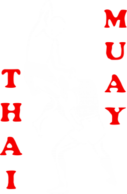 Принт Штаны Muay Thai Jump - FatLine