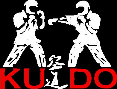 Принт Футболка Поло Kudo Fight - FatLine