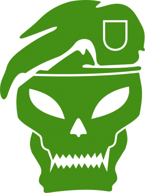 Принт Реглан Call of Duty Black Ops logo - FatLine
