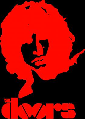 Принт Детская футболка The Doors - FatLine