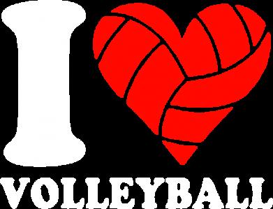 Принт Мужская толстовка на молнии I love volleyball - FatLine