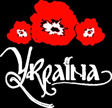 Принт Мужская толстовка на молнии Квітуча Україна - FatLine
