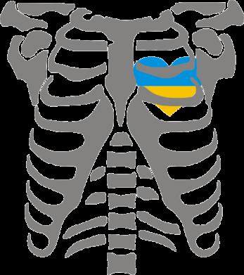 Принт Реглан Скелет з сердцем Україна - FatLine