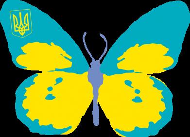 Принт Реглан (свитшот) Український метелик - FatLine