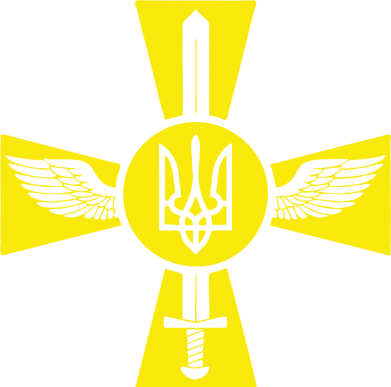 Принт Толстовка Меч, крила та герб - FatLine
