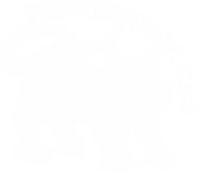 Принт Футболка Prehistoric Cat - FatLine