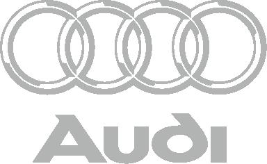 Принт Шапка Audi Big - FatLine