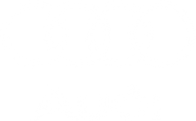 Принт Толстовка Audi Small - FatLine