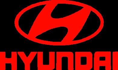 Принт Шапка Hyundai Small - FatLine