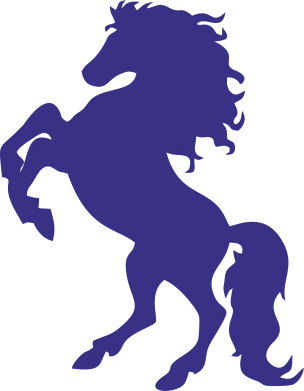 Принт Подушка Конь - FatLine