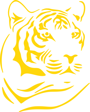 Принт Женская футболка Морда тигра - FatLine