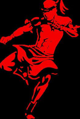 Принт Подушка Muay Thai Low Kick - FatLine