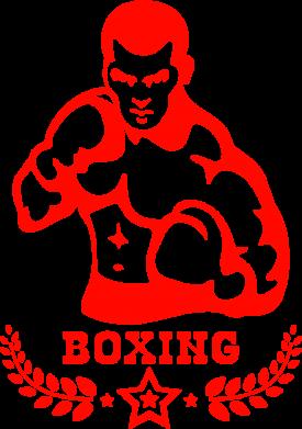 Принт Сумка Boxing Star - FatLine