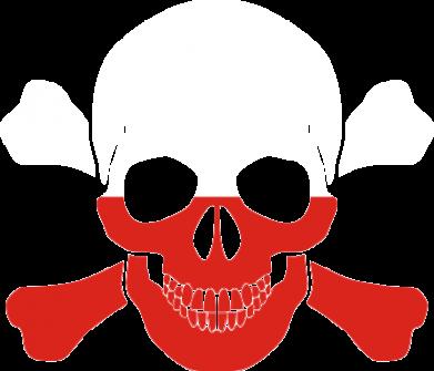 Принт Реглан Двокольоровий череп - FatLine