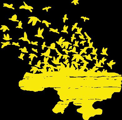 Принт Мужская толстовка на молнии Українські птахи - FatLine